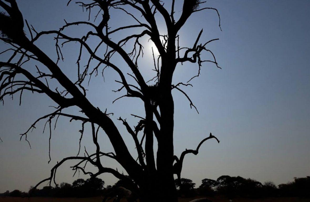 Salzpfanne, Botswana